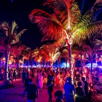 Crash My Playa crowd with palm trees and lighting